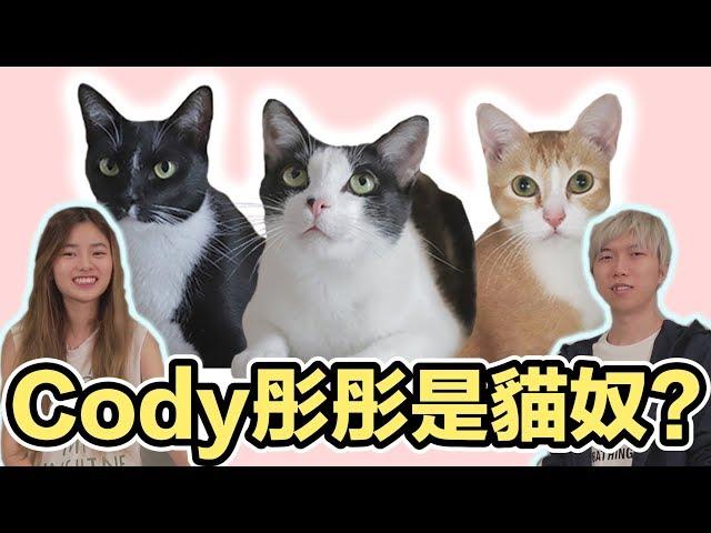 【丫妃和兩個太監】我們的貓奴是Cody和彤彤!