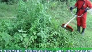 BRUSH CUTTER INDIA  RBC 35   REDLANDS ASHLYN MOTORS PLC   GRASS CUTTER