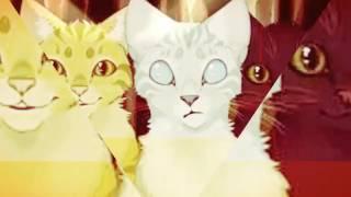 Коты воители Знак трёх