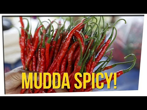 Spicy Food Keeps You Cool in Summer? ft. Tim DeLaGhetto, Ricky Shucks & DavidSoComedy