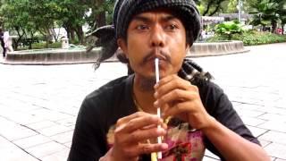 Tutorial Membuat Serunai (Alat Musik Tiup) Dengan Sedotan Minuman