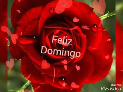 Feliz Domingo para todos....