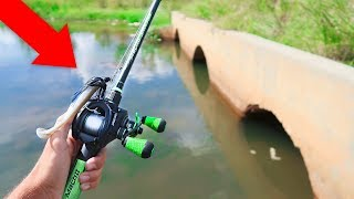 Catching TROPHY Bass in TINY CANAL (Bank Fishing)