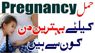 how to get pregnancy fast tips in urdu   Jaldi Pregnant Krne Ka Tarika   جلدی حمل ٹھہرنے کا صحیح وقت