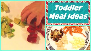 Toddler Meal Ideas | 13 Months Old