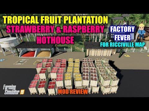 "Fruit Plantation & Berry Hothouse ""Ricciville"" Mod Review Farming Simulator 19"