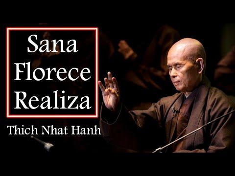 Thich Nhat Hanh.2.  2011.Sana.Florece.Realiza.SubEsp.flv