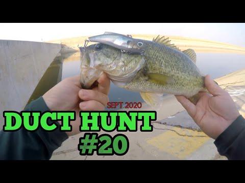 California Aqueduct Fishing Sept 2020