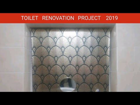 Toilet renovation done by my self 2019.