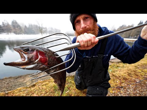 Primitive SPEARING FISH With A TRIDENT!!! (Like AQUA-MAN)