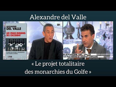 Alexandre del Valle - Le projet totalitaire des monarchies du Golfe - Salut les Terriens (C8)