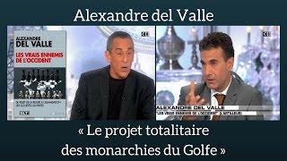 Alexandre del Valle - Le projet totalitaire des monarchies du Golfe - Salut les Terriens (C8)(Thierry Ardisson reçoit Alexandre del Valle dans