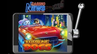 Der Fortune Dogs Slot von Habanero Gaming