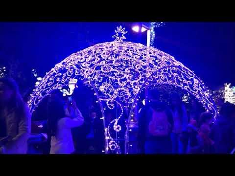 Haifa Christmas Celebration - December 7 2019