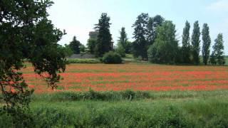 Mein Jakobsweg - 7.08 - Von Romans-sur-Isère nach Chabeuil