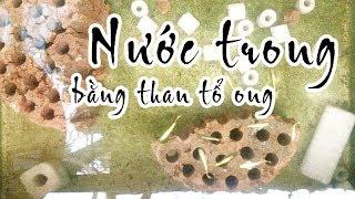 Mẹo làm nước trong từ than tổ ong - chi phí ko tốn tiền.