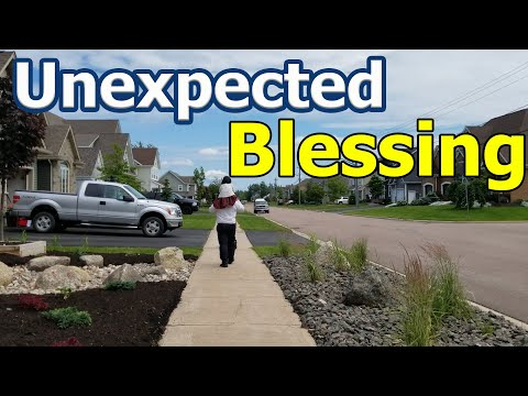 Unexpected Blessing Of Our Family