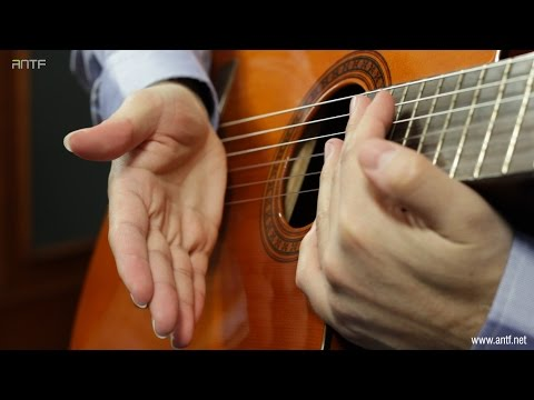 guitar 204: basic chords hitting -     -  (dr. antf)