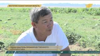 видео Работа Казахстан
