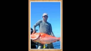 Monster fish manubar 2014(2)