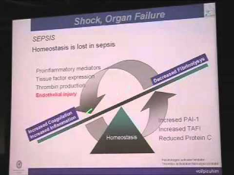 Shock, Organ Failure and MOF