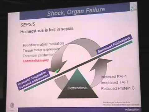 Shock, Organ Failure and MOF