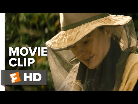 Tell It To The Bees Movie Clip - Bees Closeup (2019) | Movieclips Indie