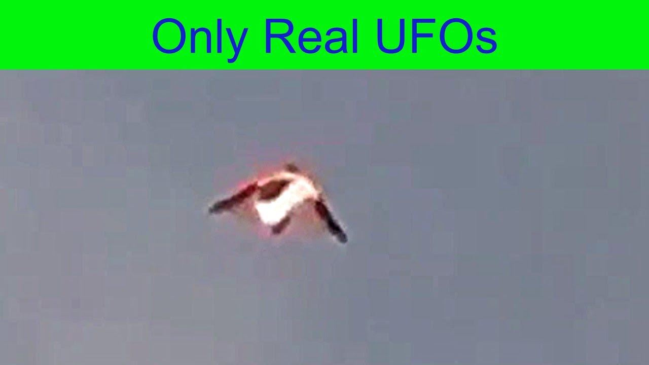 UFO con sfera di luce integrata visto da vicino