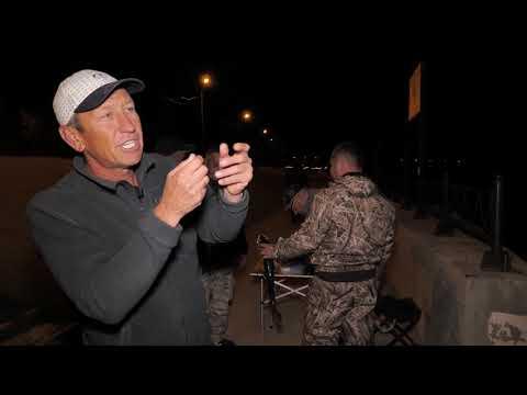 Диалоги о рыбалке. Астрахань. Октябрь. Ночной судак в городе и гальджа на охоте