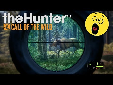 TheHunter: Call Of The Wild PS4 Pro Gameplay - Hunting Bear, Deer, Elk, Moose + In Game Fun Bugs