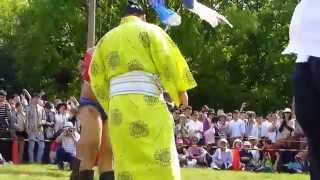 平成26年5月4日(日)、練馬・光が丘公園で行われたハワリンバヤル20141日...