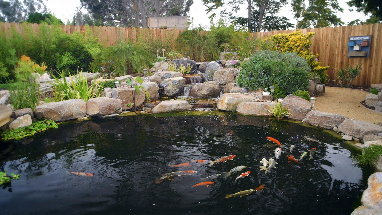 How to build a koi pond final youtube for Building a koi pond
