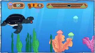 Диего Туга морских черепах видео в Великой с Диего из Нью