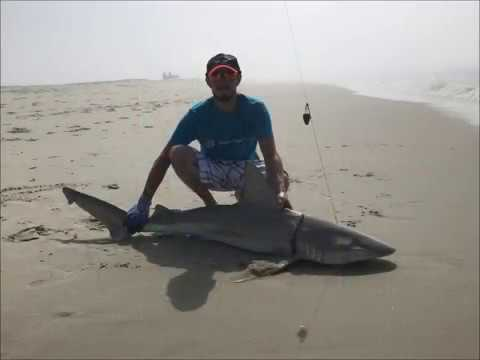 Surf fishing new jersey 2017 youtube for Ocean city nj surf fishing report