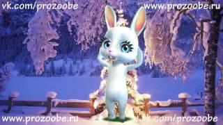 С Новым Годом Дорогая Подруга! Новогоднее поздравление от ZOOBE Зайки Домашней Хозяйки