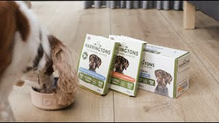 If dogs could talk: Doggy Dinners - Harringtons Wet Dog Food