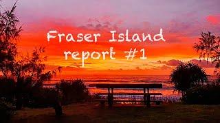 Fraser Island report 1