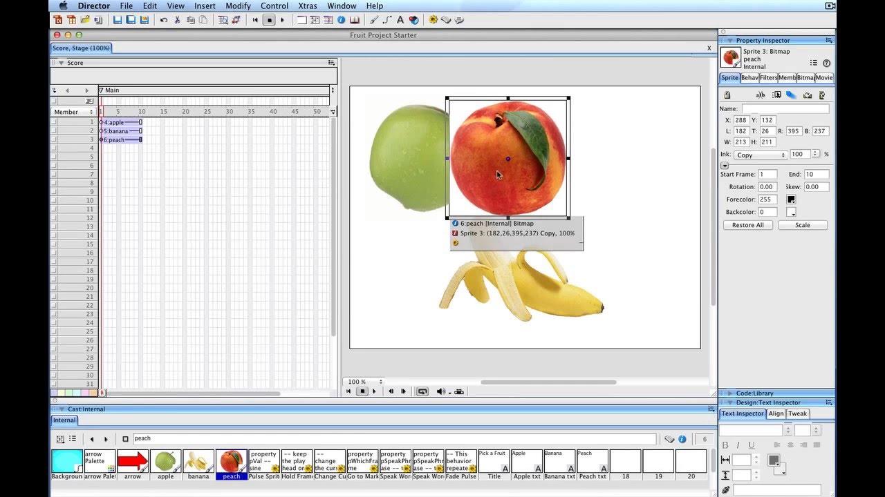 basic interactive slideshow with adobe director part 1 youtube rh youtube com Macromedia Director Logo Macromedia Director Alternative