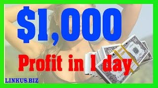 How To Make Money Online Fast - Make Money From Home 2017 Case Study 5