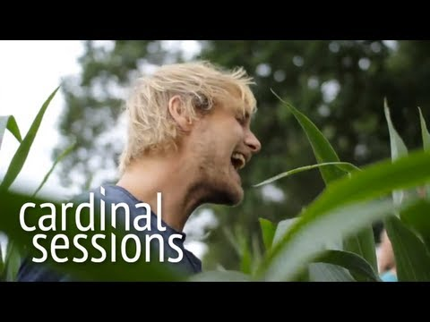 Steaming Satellites - How Dare You - CARDINAL SESSIONS (Appletree Garden Special)