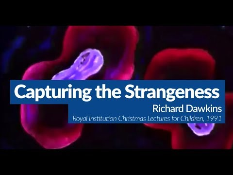 The Weirdness of Evolution | Evolution Explained with Richard Dawkins