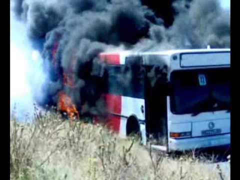 Bus  Meknes