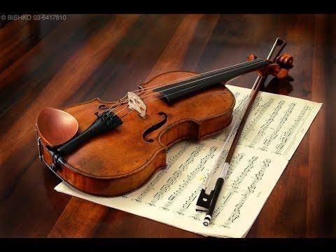 The Blue Danube Waltz - Johann Strauss!
