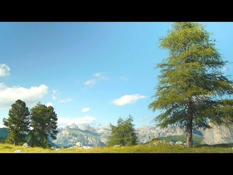 Beautiful Easy Instrumental Music - brain, think, inspirational - Dolomites - relaxdaily N°065