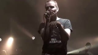 belle and sebastian - the cat with the cream (live)