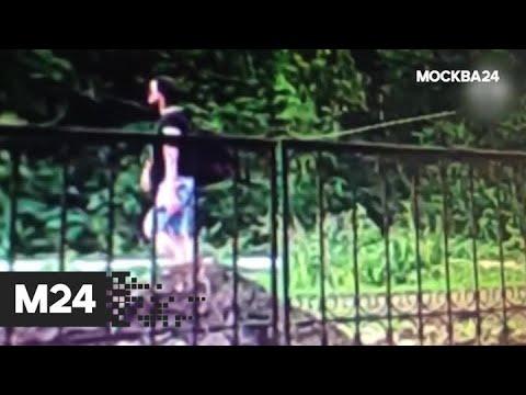 """""""Специальный  репортаж"""": народый суд - Москва 24"""