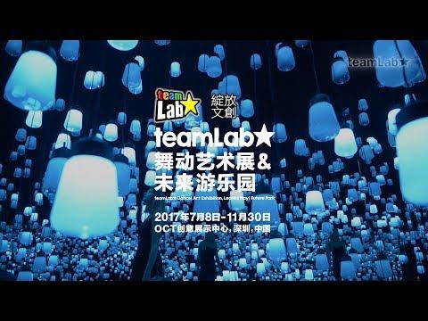 teamLab: 舞动艺术展&未来游乐园