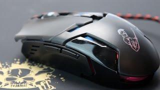 Первый взгляд на мышь Qumo Dragon War Pike