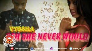 Vibsha - Say She Never Would - February 2020