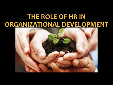 The Role of HR in Organizational Development